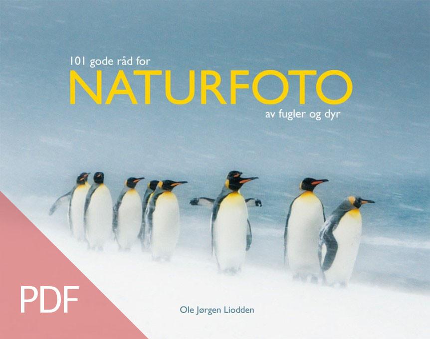 Naturfotobok-862x680-PDF